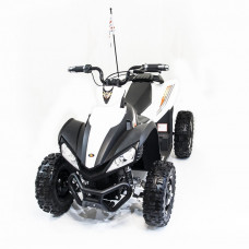 Спортивный электроквадроцикл Dongma ATV White Brushless