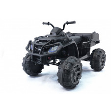 Детский квадроцикл Grizzly Next Black 4WD